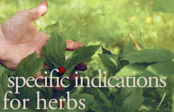 specific indication for herbs